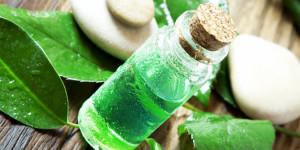 5-khasiat-ajaib-tea-tree-oil-untuk-kecantikan