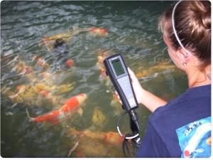 DO meter untuk pembibitan ikan