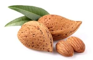 Almond21