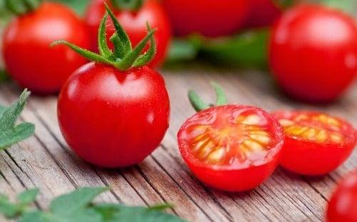 Bagaimana Menentukan Kematangan Tomat