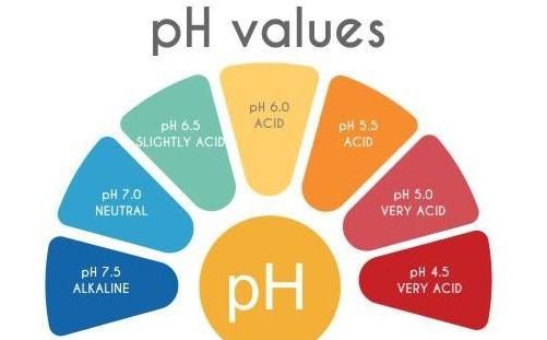 Arti pH Dalam Pengukuran pH
